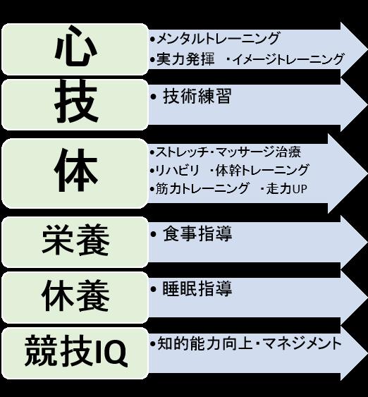 6つの要素2